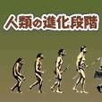 人類の進化段階診断